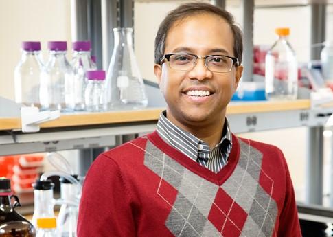 Dipanjan Pan - professor of bioengineering